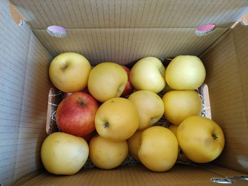 Caja Manzanas Mermelada