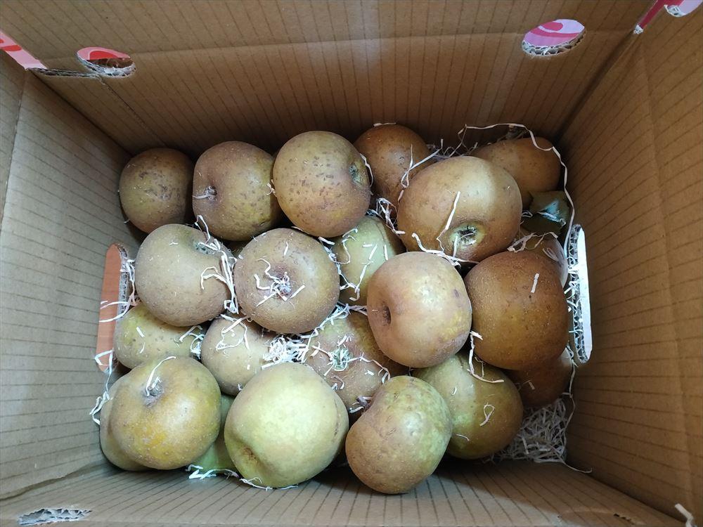 Caja Tarta de Manzana 5 kilos