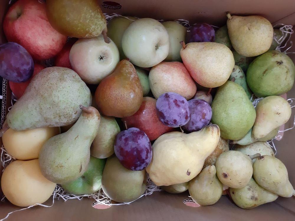 Caja de toda nuestra fruta
