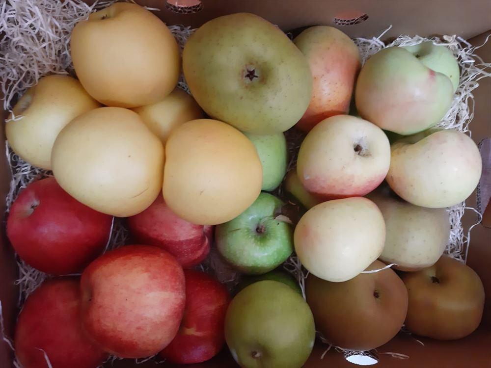 Caja Todo Manzanas